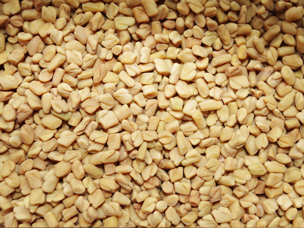 12-spices-nepali-cuisine-health-benefits-fenugreek